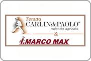 logo Carlindepaolo